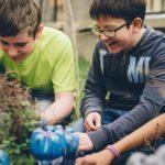 Schüler arbeiten im Schulgarten und graben neue Pflanzen ein.